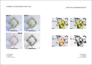 Catalog Exhibition - How Colourblind people see the artwork The Mouth of Etna E Version